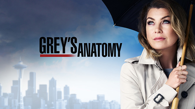 Grey's Anatomy Season 13 – Review of episode 24 'Ring of Fire'