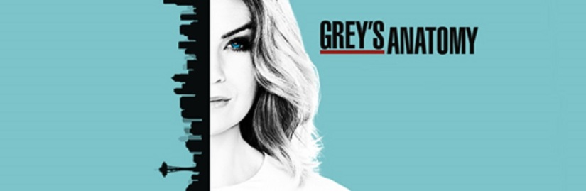 Grey's Anatomy Season 13 – Review of episode 18 'Be Still, My Soul'